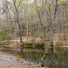 prince william forest park-lg-11