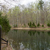 prince william forest park-lg-6