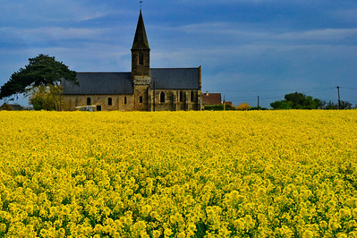 Old church and canola flowers