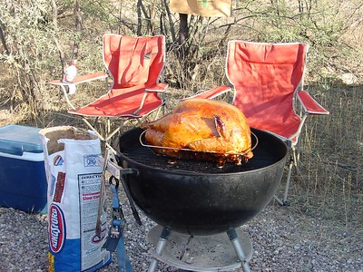 The Yavapai turkey, for our Thanksgiving feast in the desert.