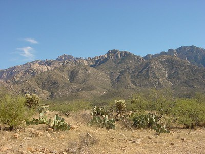 Nice view of the Santa Catalinas from the ridge just above our camp.