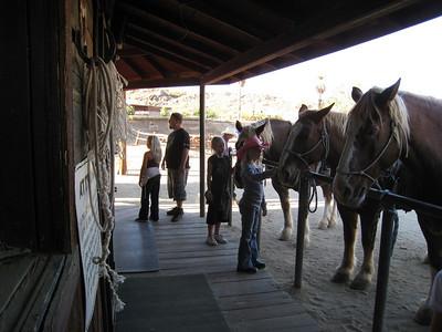 HorseBack Riding South Mountain 2007