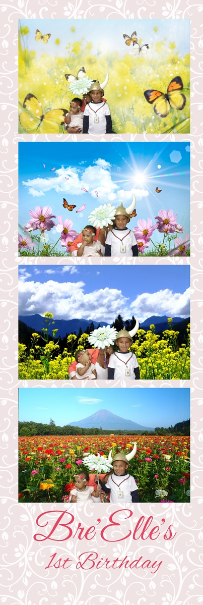 Princess Party Green Screen Strips