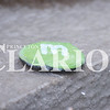 Quiche Matchen/ Daily Clarion<br /> A green rock sits on the fountain near the Palace Thursday evening.