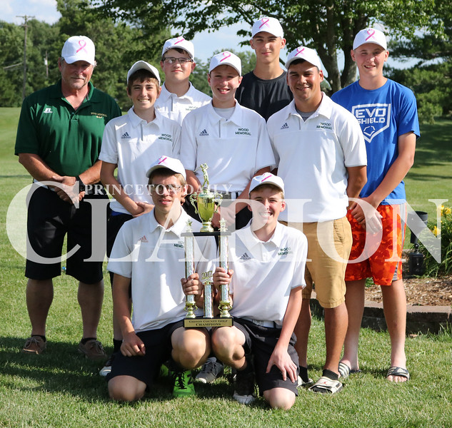 Lucas Whitten/Daily Clarion<br /> The Wood Memorial High School Trojans boys golf team defeat Princeton Community High School and Gibson Southern High School 331-334-336 respectively to win it's first Gibson County championship since 2011.