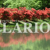 Sarah Loesch/Daily Clarion A row of azaleas is reflected in the lake Wednesday afternoon at the Azalea Path Arboretum & Botanical Gardens in Hazelton. The Azalea Path attracts visitors from April to June with peak bloom occuring during late April through the first two weeks of May.
