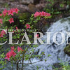 Sarah Loesch/Daily Clarion The Azalea Path Arboretum & Botanical Gardens has 300 varities of azaleas, two lakes, a waterfall, along with multiple other features, for visitors to see on the three miles of walking trails.