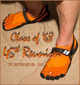 45th Reunion - 2013