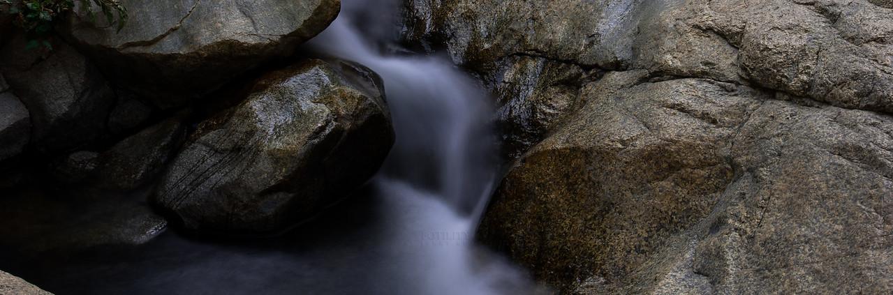 © Jerry Roxas Photography