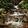 N - Rocky Mountain Stream by Dorothy Sansom - HM