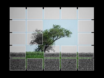 C - Tree Tiles by Gary Prill - 3rd