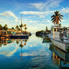 DSC08212 David Scarola Photography, The Florida Keys, Sep 2017 copy