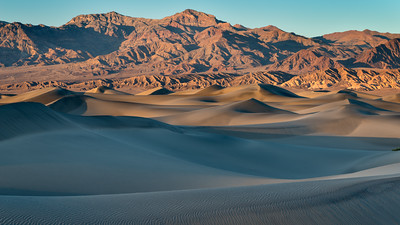 Mesquite Dunes at Sunset