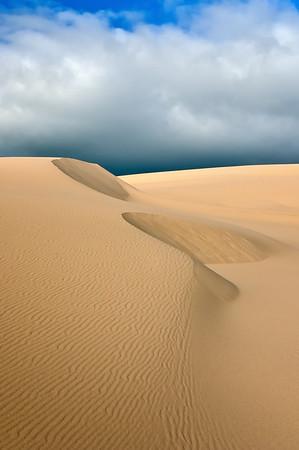 Oregon Dunes #1