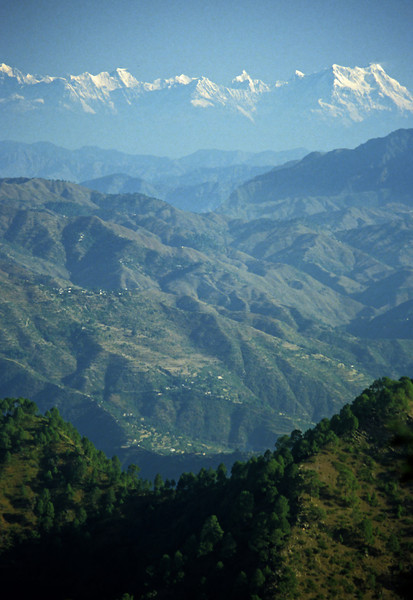 L1168 Himalayan foothills with terrace farming