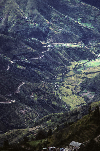 L1207 Himalayan foothills