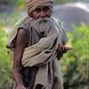 L1689 Beggar