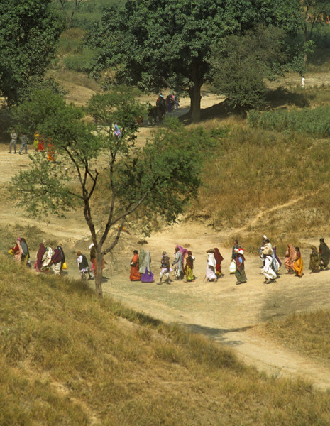 L1802 Pilgrimage is an ancient and major tradition in India