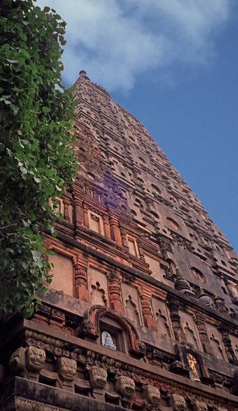 L2480 Mahabodhi Temple, Bodhgaya. Buddhist