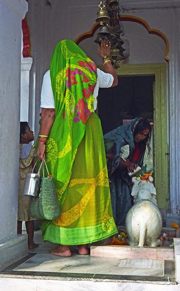 L2523  Nandi bull at Virbhadra Temple, Rishikesh