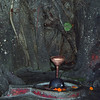 L1007 Lingam and yoni with chatnag