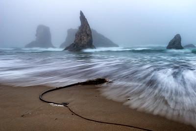 Oregon Coast - Bandon's Facerock Beach #3