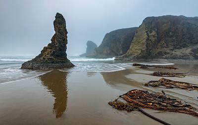 Oregon Coast - Bandon's Facerock Beach #1