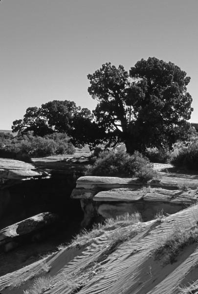 L6352 Utah dry country