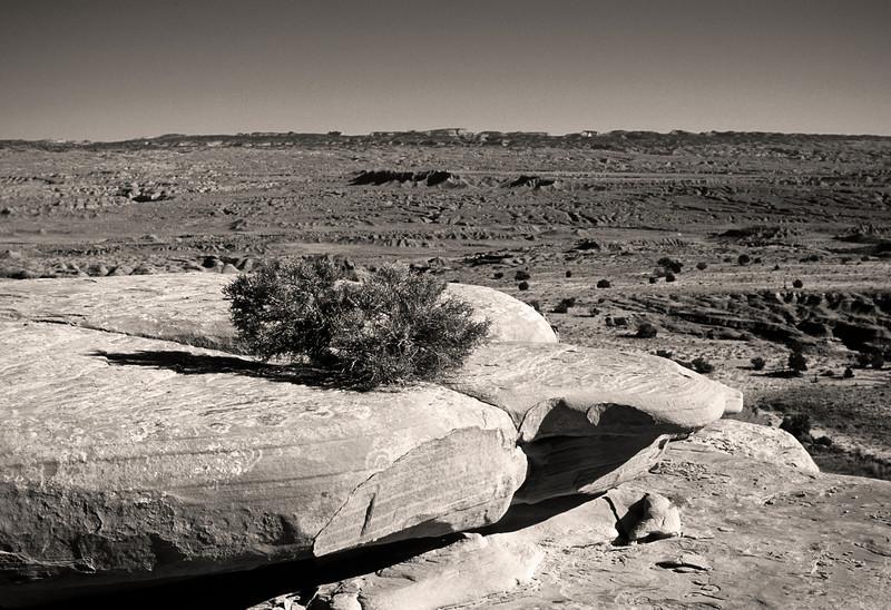 L6361 Utah dry country