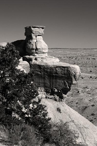 L6354 Utah dry country