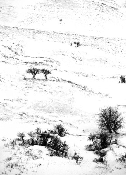 L6385 Montana plains winter