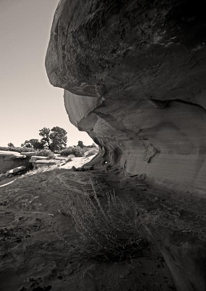 L6351 Utah dry country