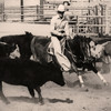 L8027 Cutting. Few horses have the bloodline to make this move. Great Falls, Montana. Photo by Carole Olson
