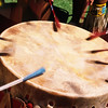 L6395 Drumming, Native American Pow Wow, North American Indian Days, Browning, Montana