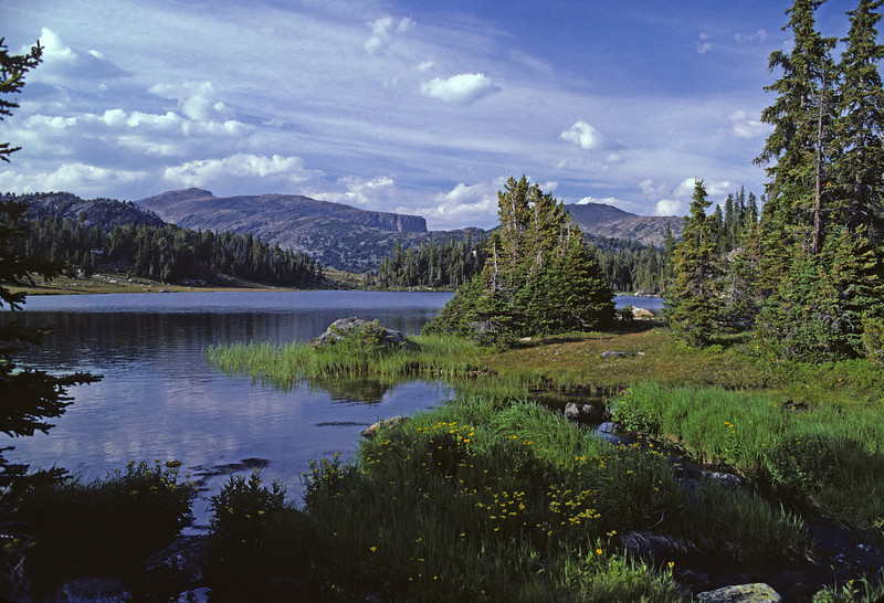 L6018 Absaroka-Beartooth Wilderness, Montana