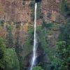L6246 Multnomah Falls, Oregon