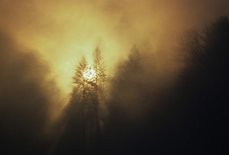 L6230 Morning sun, Kootenai River, Libby, Montana