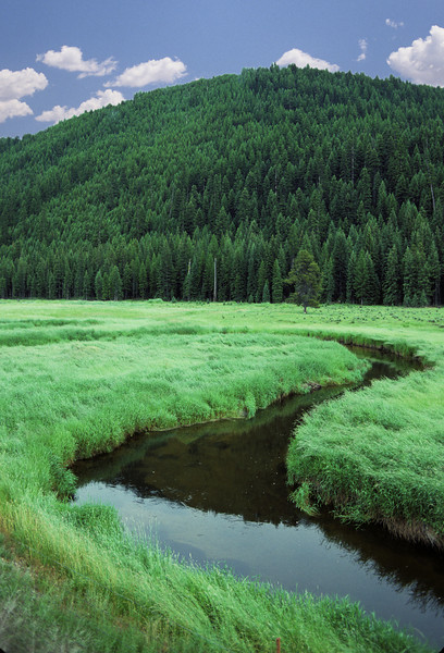 L6305 Serpentine river, Montana