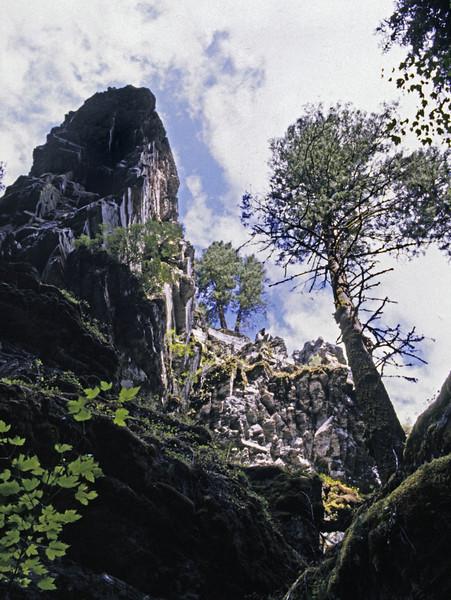 L6247 Murr Canyon, Kalispell - Libby, Montana