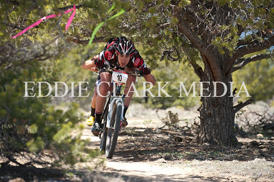 The upper downhill section of singletrack had a low hanging tree feature for tall riders to pay particular attention to.