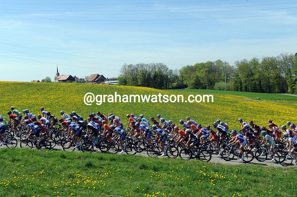 Another awful day in the Tour of Romandie for the peloton...