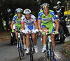 Basso looks magnificent as he, Scarpini and Nibali sweep up a shattered Garzelli...