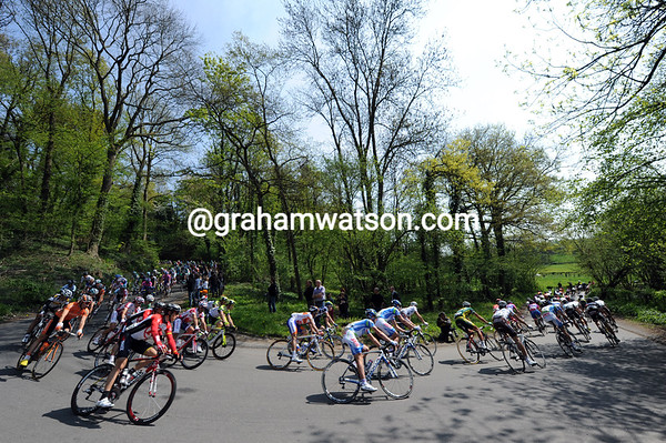 The peloton has yet to react as it descends through some leefy forests...