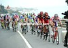 Forty four riders have formed an elite front group as they hit the final 50-kilometres...