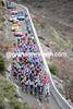 The peloton is hardly racing as it climbs to a height of over 1,000 metres behind the Cote d' Azur...