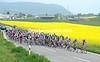 The peloton is chasing...