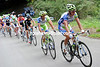 Peter Sagan leads Vincenzo Nibali in pursuit of the Martin and Sastre escape...