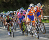 Luis Leon Sanchez is chasing for Rabobank and Oscar Freire...