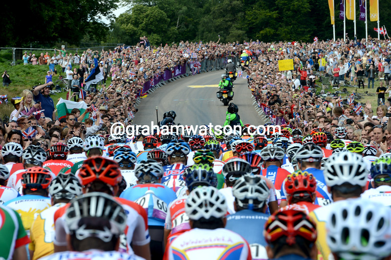 Massive crowds watch the peloton as it passes through Richmond Park in south-west London