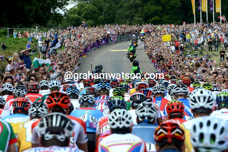 Massive crowds watch the peloton as it passes through Richmond Park in south-west London